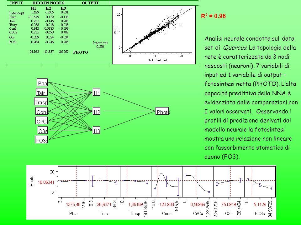 Phar Tair Trasp Cond Ci/Ca O3s H1 H2 H3 Photo FO3s Analisi neurale condotta sul data set di Quercus. La topologia della rete è caratterizzata da 3 nod