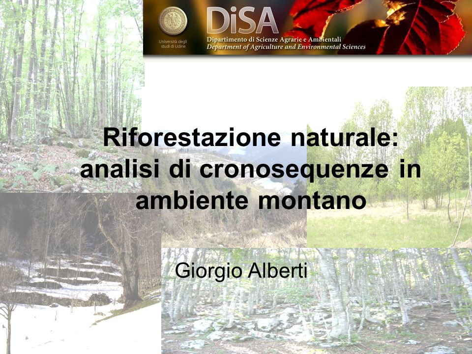 Riforestazione naturale: analisi di cronosequenze in ambiente montano Giorgio Alberti