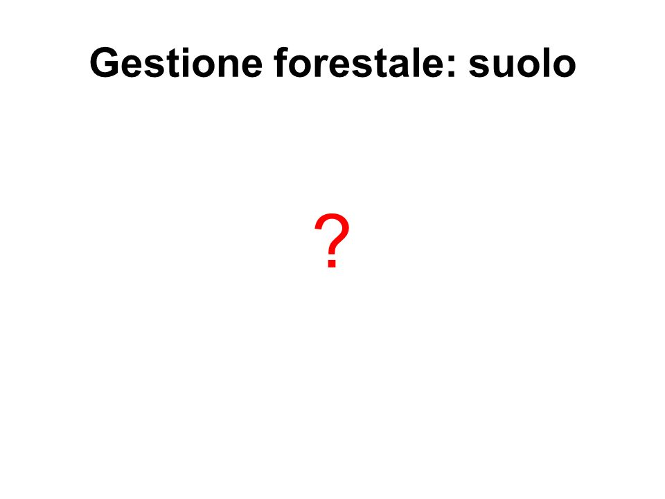 Gestione forestale: suolo ?