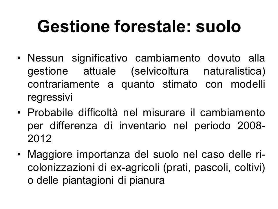 Gestione forestale: suolo Nessun significativo cambiamento dovuto alla gestione attuale (selvicoltura naturalistica) contrariamente a quanto stimato c