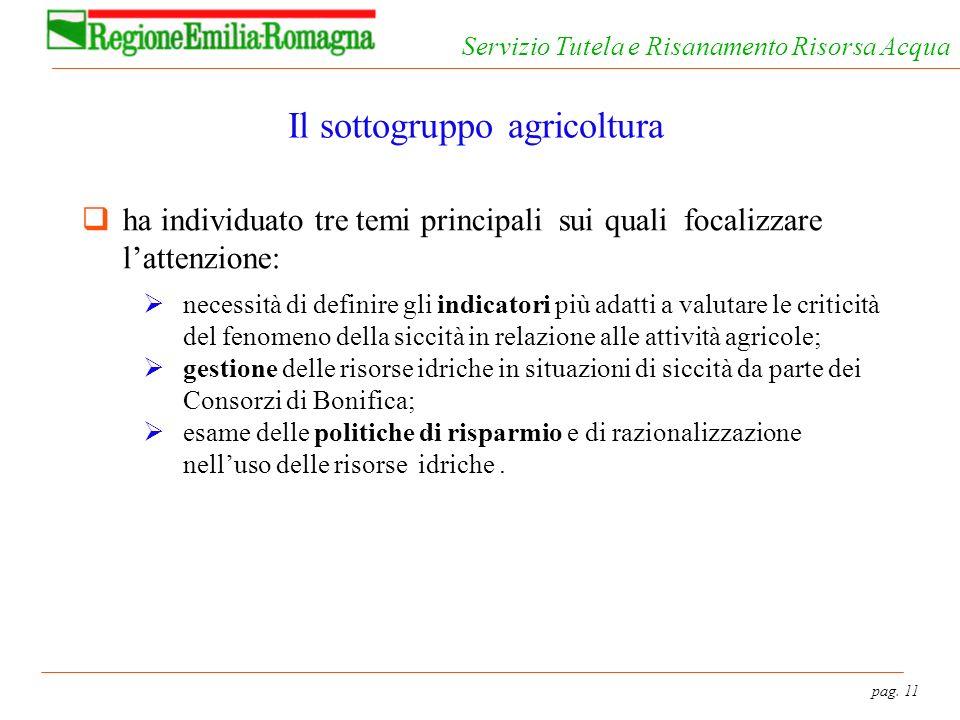 pag. 11 Servizio Tutela e Risanamento Risorsa Acqua Il sottogruppo agricoltura ha individuato tre temi principali sui quali focalizzare lattenzione: n