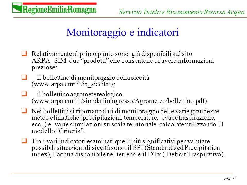 pag. 12 Servizio Tutela e Risanamento Risorsa Acqua Monitoraggio e indicatori Relativamente al primo punto sono già disponibili sul sito ARPA_SIM due