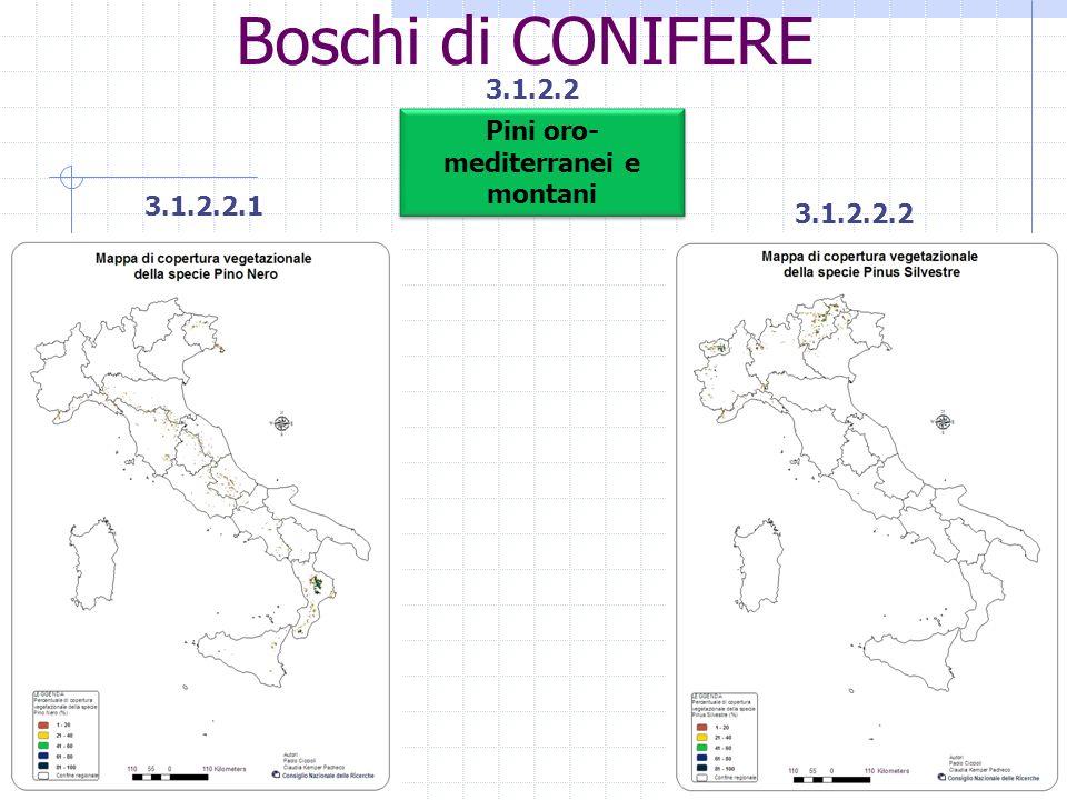 Boschi di CONIFERE 3.1.2.2 3.1.2.2.1 3.1.2.2.2 Pini oro- mediterranei e montani