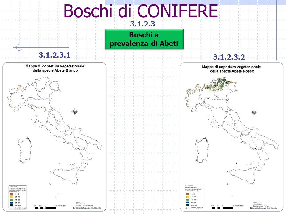 Boschi di CONIFERE 3.1.2.3 3.1.2.3.1 3.1.2.3.2 Boschi a prevalenza di Abeti Boschi a prevalenza di Abeti