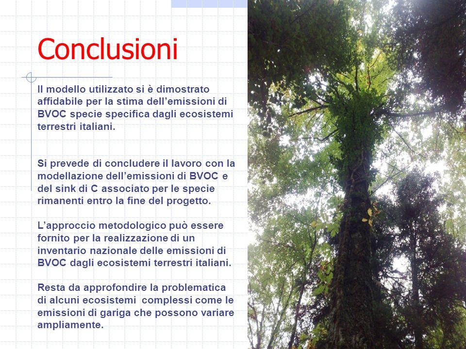 Conclusioni Il modello utilizzato si è dimostrato affidabile per la stima dellemissioni di BVOC specie specifica dagli ecosistemi terrestri italiani.