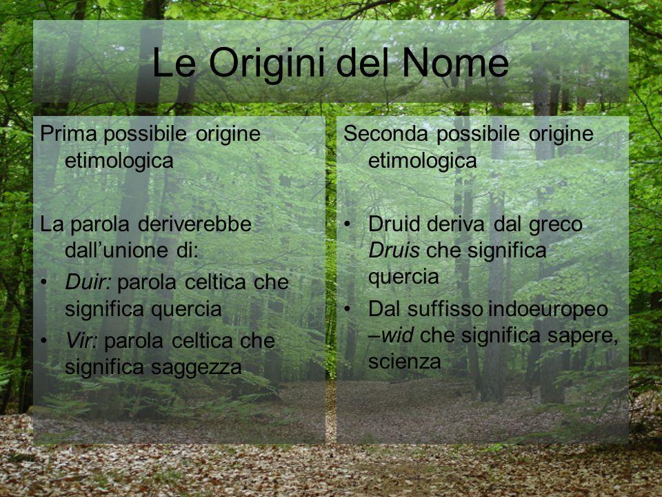 Le Origini del Nome Prima possibile origine etimologica La parola deriverebbe dallunione di: Duir: parola celtica che significa quercia Vir: parola ce