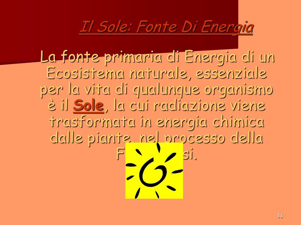 11 Il Sole: Fonte Di Energia La fonte primaria di Energia di un Ecosistema naturale, essenziale per la vita di qualunque organismo è il Sole, la cui radiazione viene trasformata in energia chimica dalle piante, nel processo della Fotosintesi.