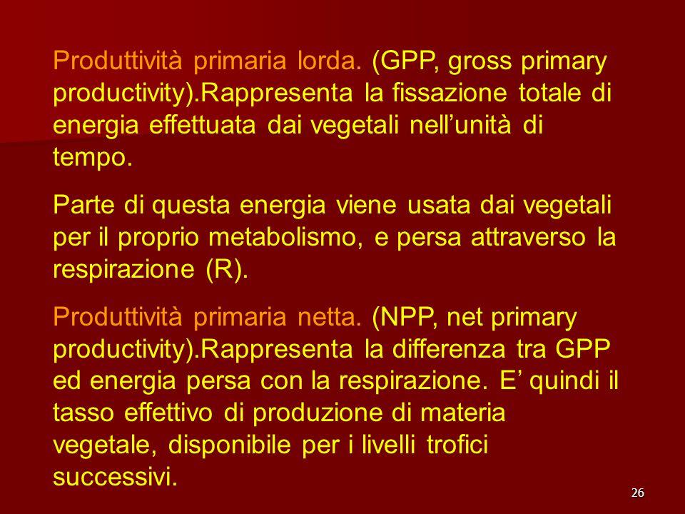 26 Produttività primaria lorda. (GPP, gross primary productivity).Rappresenta la fissazione totale di energia effettuata dai vegetali nellunità di tem