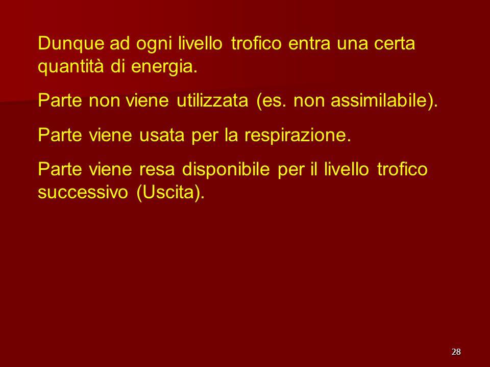 28 Dunque ad ogni livello trofico entra una certa quantità di energia. Parte non viene utilizzata (es. non assimilabile). Parte viene usata per la res