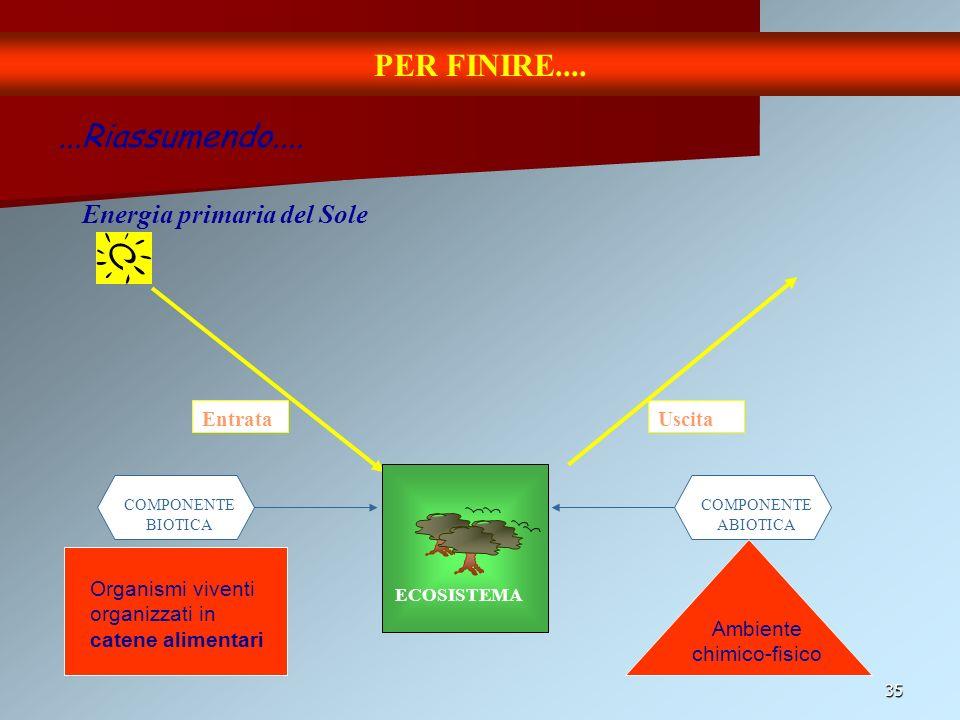 35 PER FINIRE.... Energia primaria del Sole...Riassumendo.... Entrata ECOSISTEMA COMPONENTE BIOTICA COMPONENTE ABIOTICA Ambiente chimico-fisico Organi
