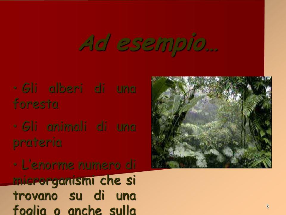 8 Ad esempio … Gli alberi di una foresta Gli alberi di una foresta Gli animali di una prateria Gli animali di una prateria Lenorme numero di microrgan