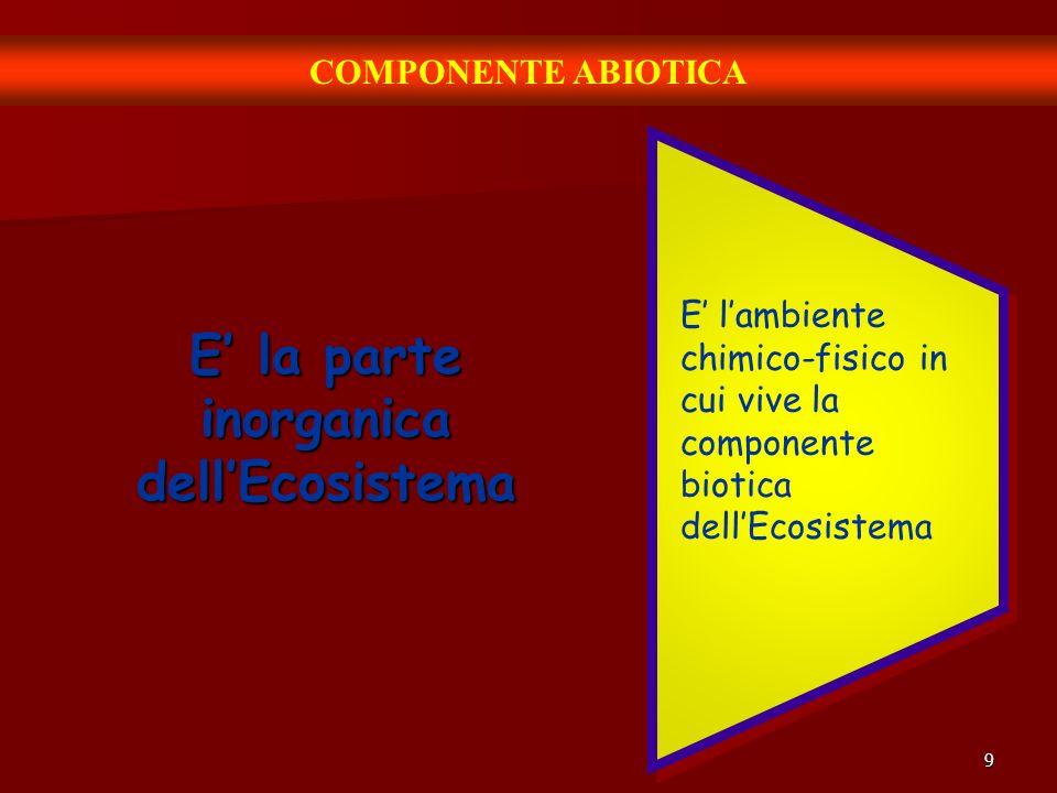 9 COMPONENTE ABIOTICA E la parte inorganica dellEcosistema E lambiente chimico-fisico in cui vive la componente biotica dellEcosistema