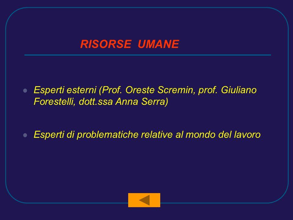 RISORSE UMANE Esperti esterni (Prof. Oreste Scremin, prof. Giuliano Forestelli, dott.ssa Anna Serra) Esperti di problematiche relative al mondo del la