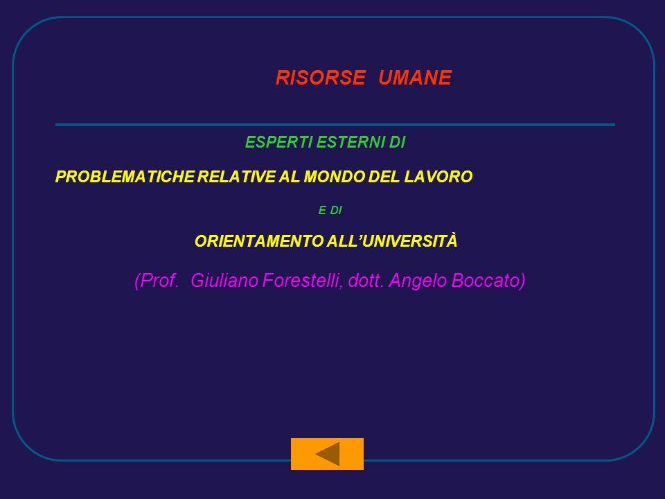 RISORSE UMANE ESPERTI ESTERNI DI PROBLEMATICHE RELATIVE AL MONDO DEL LAVORO E DI ORIENTAMENTO ALLUNIVERSITÀ (Prof.
