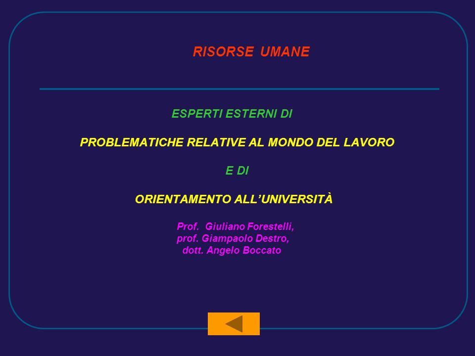 RISORSE UMANE ESPERTI ESTERNI DI PROBLEMATICHE RELATIVE AL MONDO DEL LAVORO E DI ORIENTAMENTO ALLUNIVERSITÀ Prof.