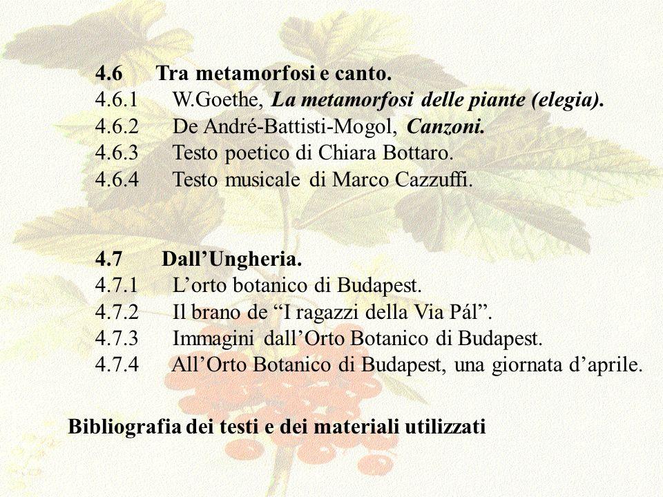 Il lavoro in oggetto è frutto del lavoro della prof.ssa Mariluccia Saggiotto e, per la parte tecnica, del prof.