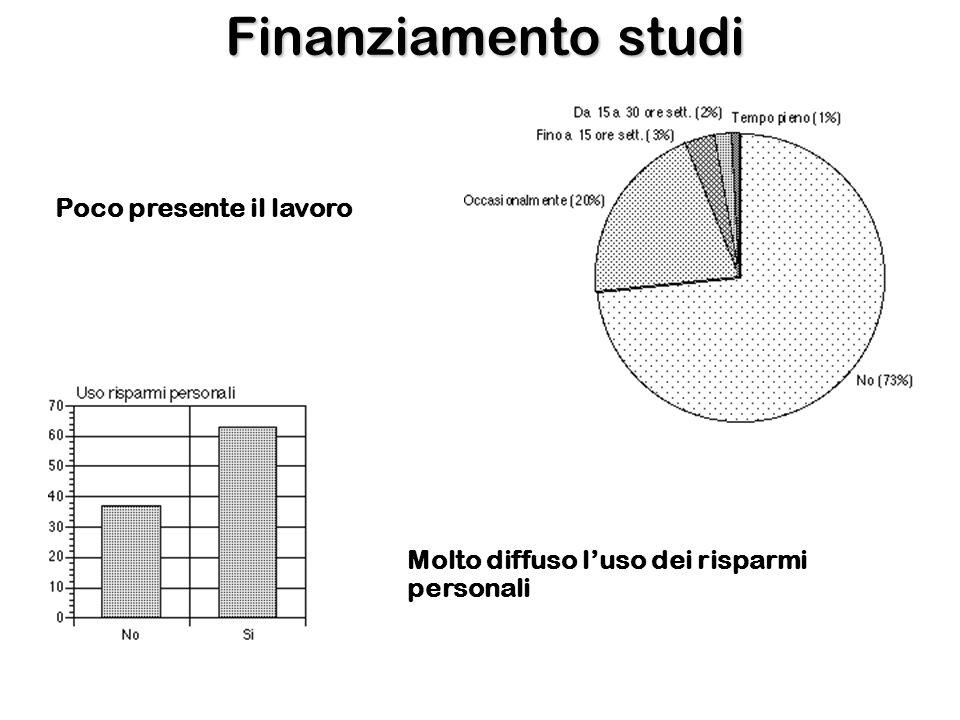Finanziamento studi Poco presente il lavoro Molto diffuso luso dei risparmi personali