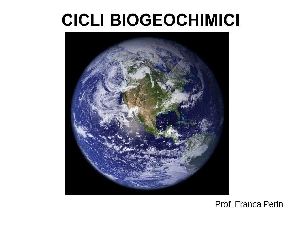 CICLI BIOGEOCHIMICI Il ciclo biogeochimico (o ciclo vitale) è il percorso seguito da un determinato elemento chimico all interno della biosfera.