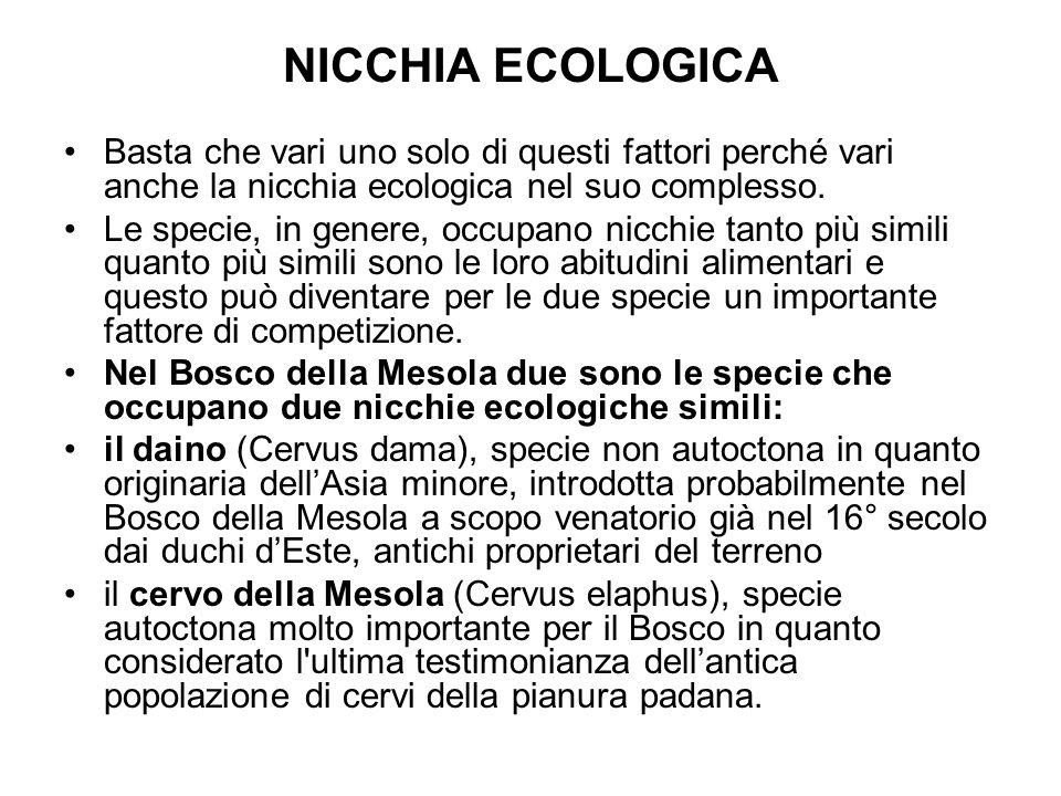 NICCHIA ECOLOGICA Basta che vari uno solo di questi fattori perché vari anche la nicchia ecologica nel suo complesso.