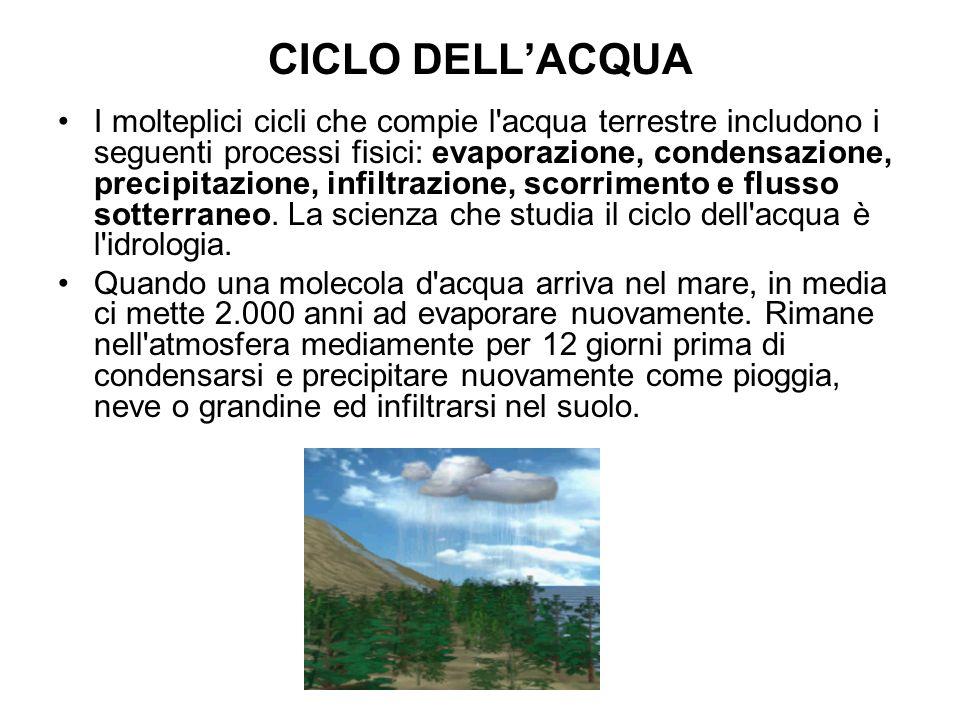 CICLO DELLACQUA La quantità di acqua che arriva ad infiltrarsi nel terreno dipende principalmente dalla permeabilità del suolo o della roccia.