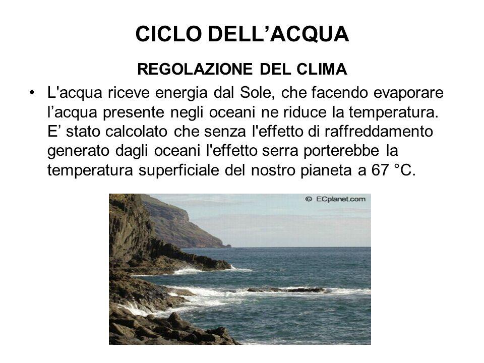 CICLO DELLACQUA REGOLAZIONE DEL CLIMA L acqua riceve energia dal Sole, che facendo evaporare lacqua presente negli oceani ne riduce la temperatura.