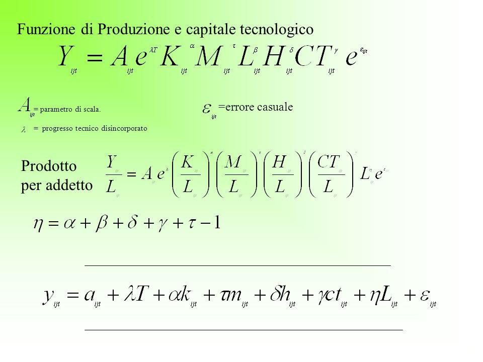 = parametro di scala. = progresso tecnico disincorporato Funzione di Produzione e capitale tecnologico Prodotto per addetto =errore casuale