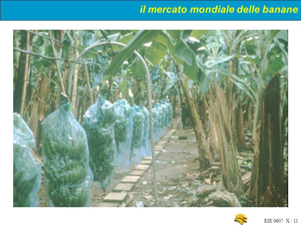 EIE 0607 X / 11 il mercato mondiale delle banane
