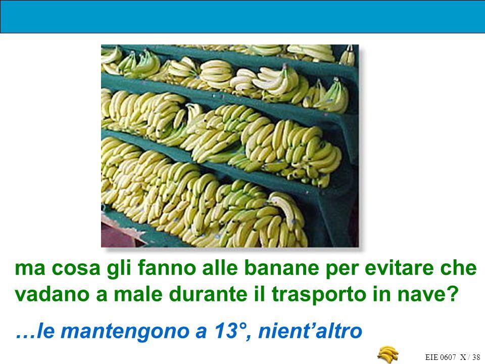 EIE 0607 X / 38 ma cosa gli fanno alle banane per evitare che vadano a male durante il trasporto in nave? …le mantengono a 13°, nientaltro