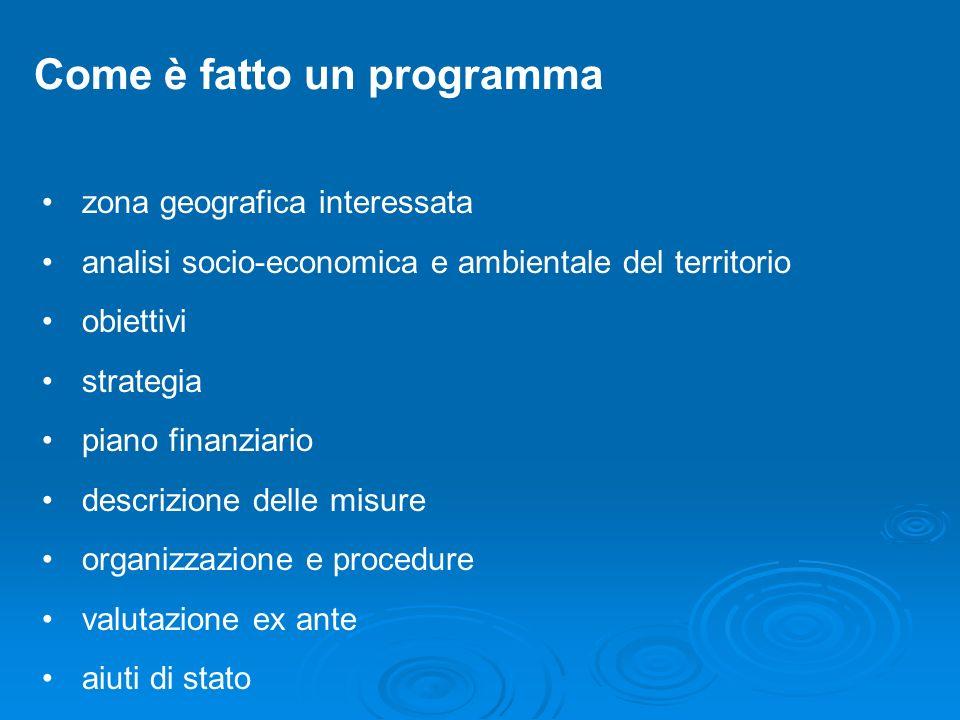 Come è fatto un programma zona geografica interessata analisi socio-economica e ambientale del territorio obiettivi strategia piano finanziario descri