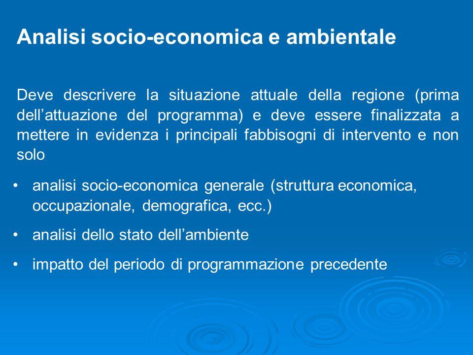 Analisi socio-economica e ambientale analisi socio-economica generale (struttura economica, occupazionale, demografica, ecc.) analisi dello stato dell
