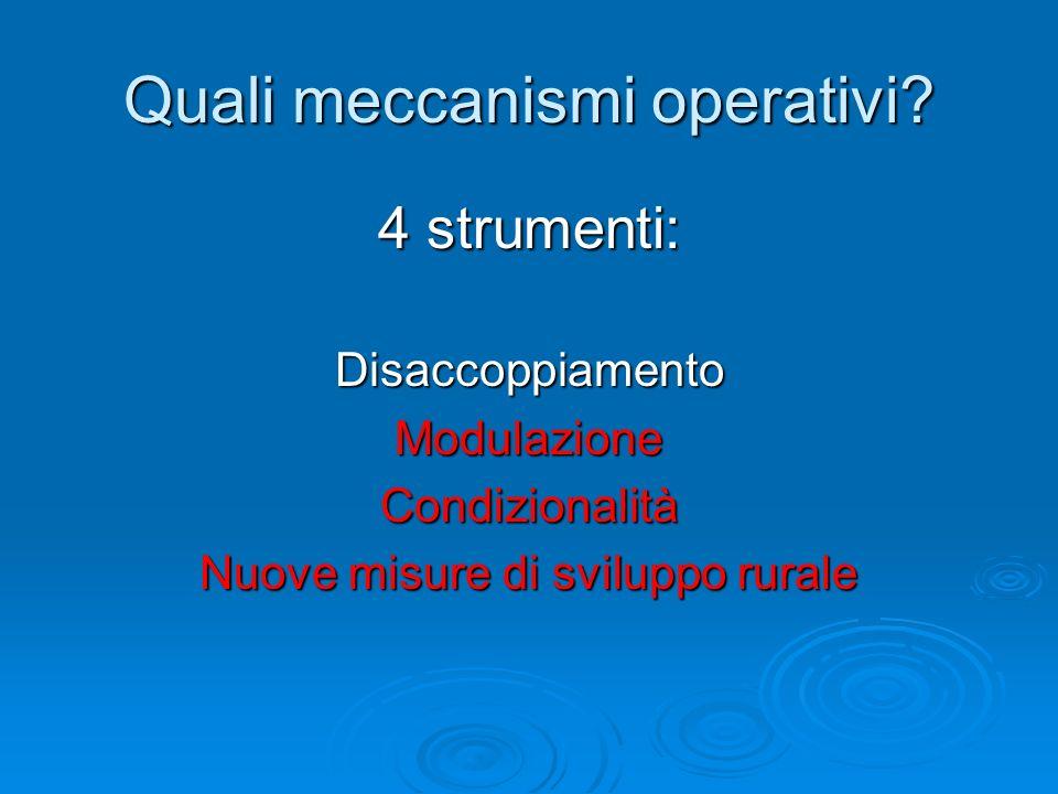 Quali meccanismi operativi? 4 strumenti: DisaccoppiamentoModulazioneCondizionalità Nuove misure di sviluppo rurale