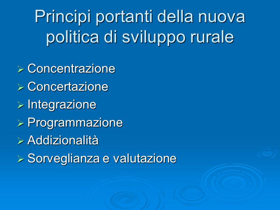 Principi portanti della nuova politica di sviluppo rurale Concentrazione Concentrazione Concertazione Concertazione Integrazione Integrazione Programm