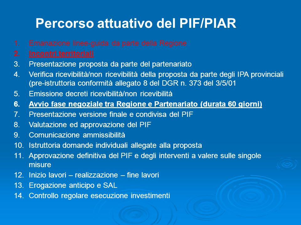 Percorso attuativo del PIF/PIAR 1.Emanazione linee-guida da parte della Regione 2.Incontri territoriali 3.Presentazione proposta da parte del partenar