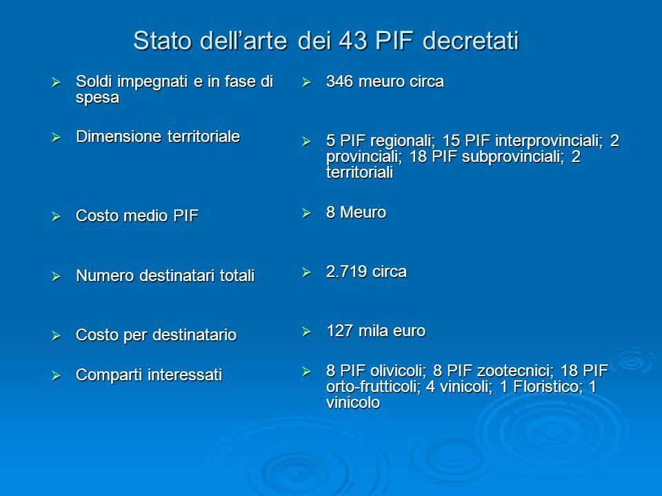 Stato dellarte dei 43 PIF decretati Soldi impegnati e in fase di spesa Soldi impegnati e in fase di spesa Dimensione territoriale Dimensione territori