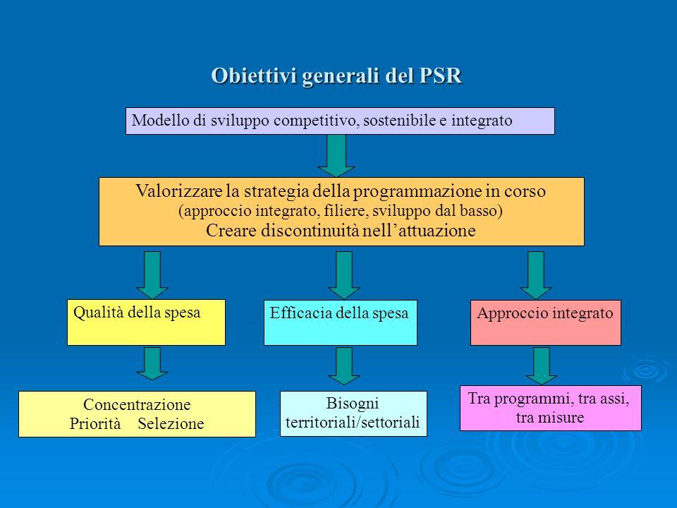 Obiettivi generali del PSR Modello di sviluppo competitivo, sostenibile e integrato Valorizzare la strategia della programmazione in corso (approccio
