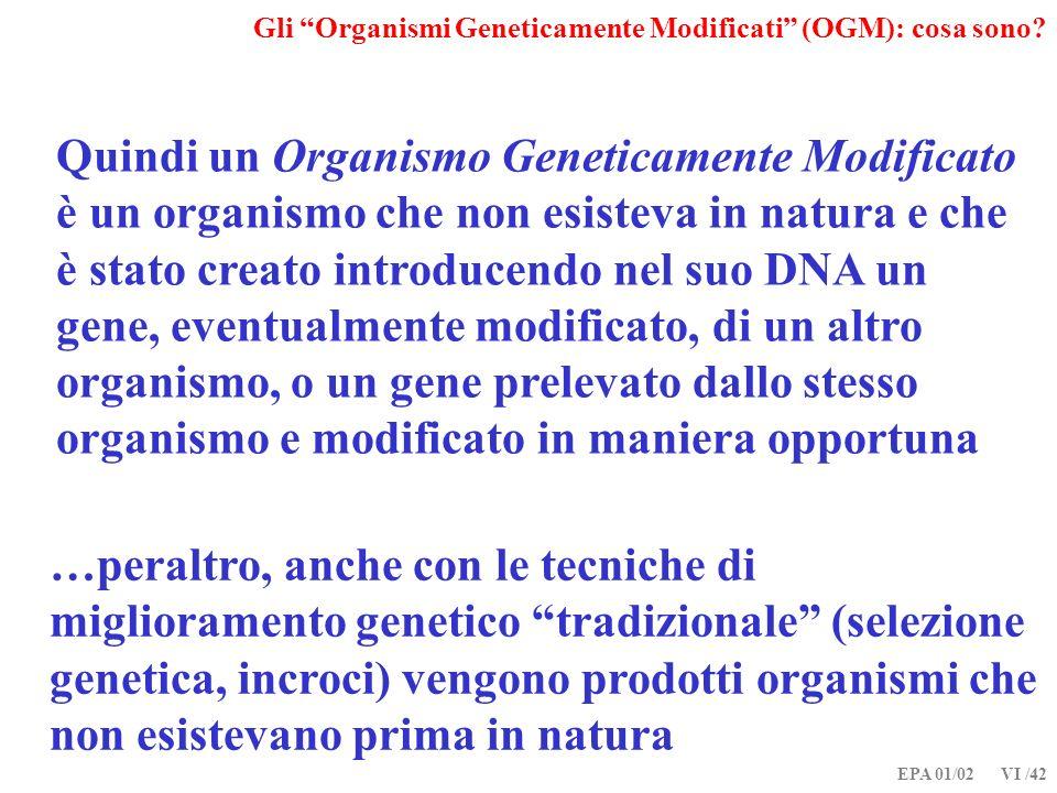 EPA 01/02 VI /42 Gli Organismi Geneticamente Modificati (OGM): cosa sono? Quindi un Organismo Geneticamente Modificato è un organismo che non esisteva