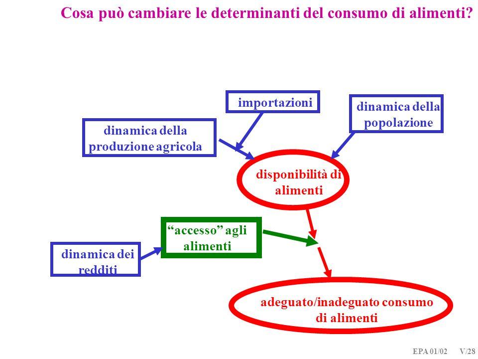 EPA 01/02 V/28 dinamica della produzione agricola importazioni disponibilità di alimenti dinamica dei redditi accesso agli alimenti adeguato/inadeguat
