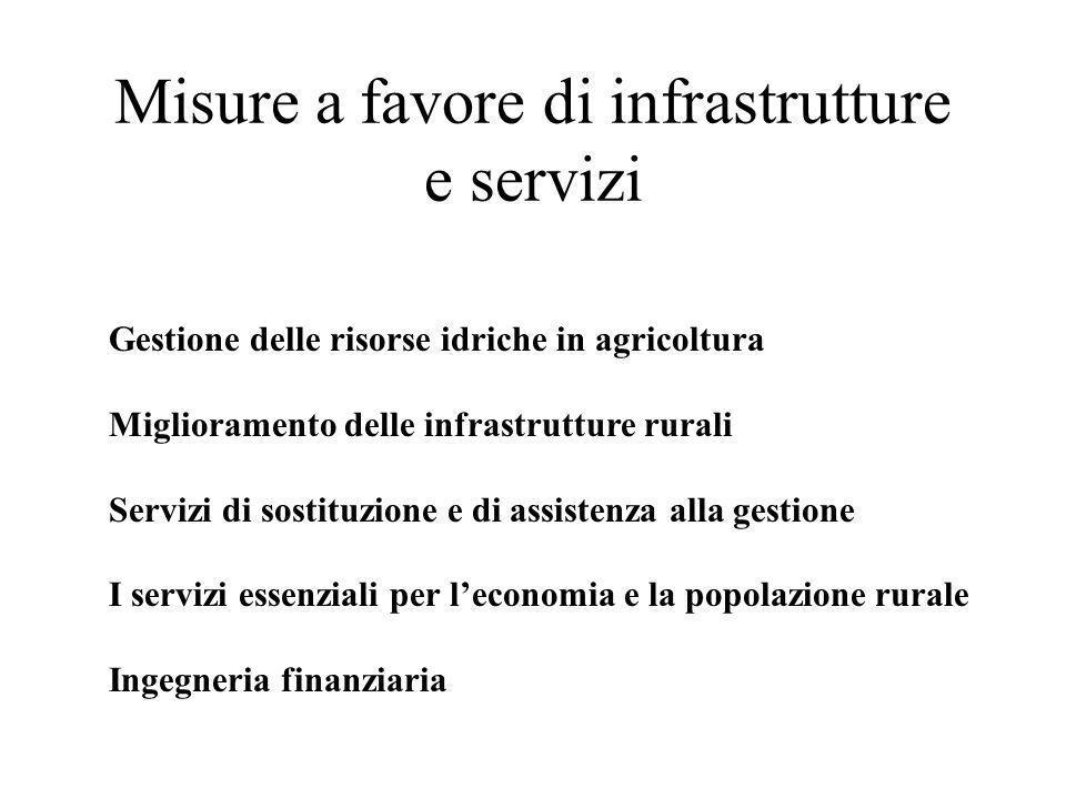 Misure a favore di infrastrutture e servizi Gestione delle risorse idriche in agricoltura Miglioramento delle infrastrutture rurali Servizi di sostitu