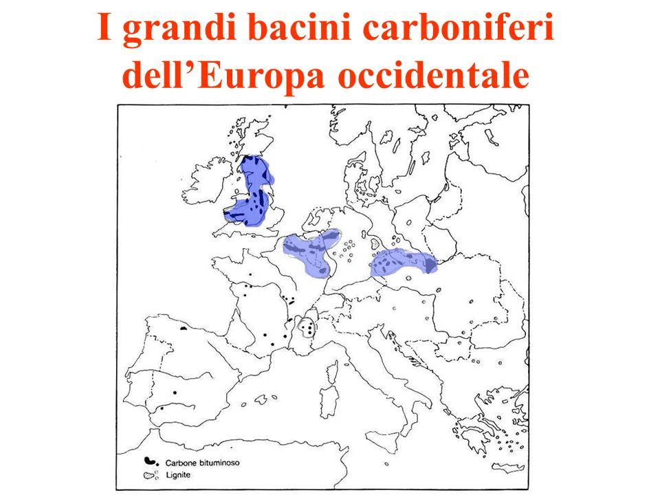I grandi bacini carboniferi dellEuropa occidentale