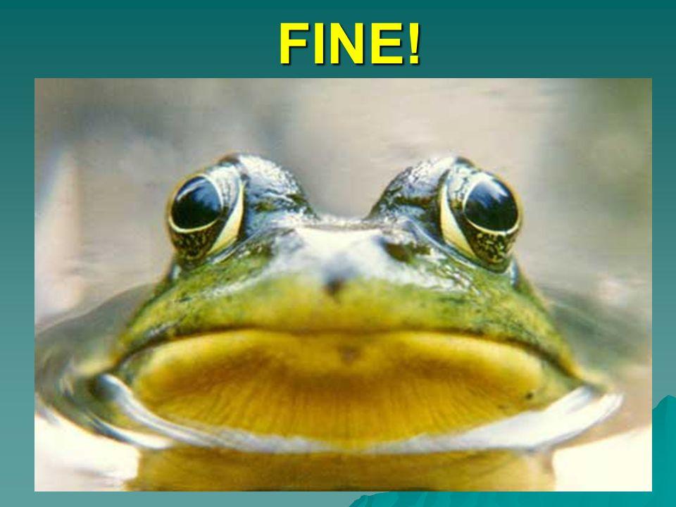 FINE!