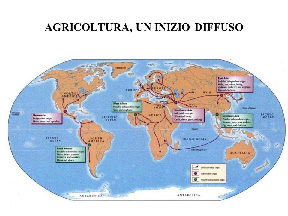 AGRICOLTURA, UN INIZIO DIFFUSO