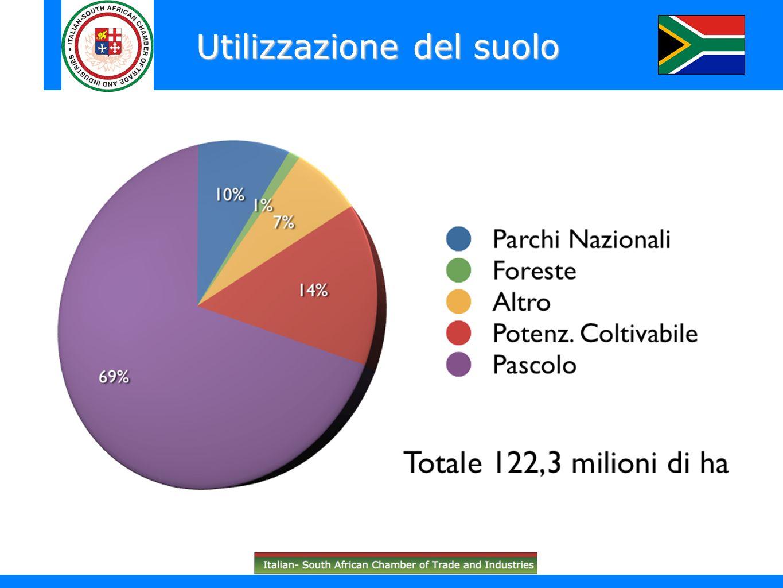 Meno del 3% del PIL con fluttuazioni (irrigazione pluviale) Importante fonte di occupazione diretta e indiretta Mais e prodotti di nicchia (vino, frutta tropicale, carne di struzzo) Settore agricolo
