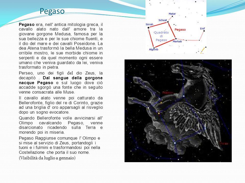 Pegaso Pegaso era, nell' antica mitologia greca, il cavallo alato nato dall' amore tra la giovane gorgone Medusa, famosa per la sua bellezza e per le
