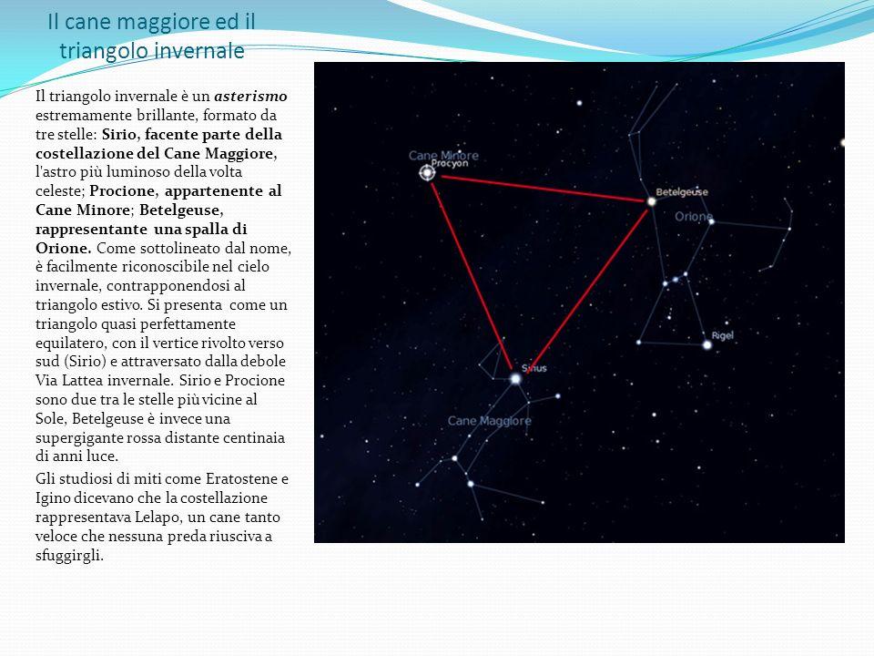 Il cane maggiore ed il triangolo invernale Il triangolo invernale è un asterismo estremamente brillante, formato da tre stelle: Sirio, facente parte d