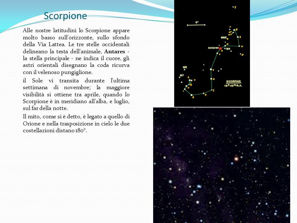 Scorpione Alle nostre latitudini lo Scorpione appare molto basso sull'orizzonte, sullo sfondo della Via Lattea. Le tre stelle occidentali delineano la