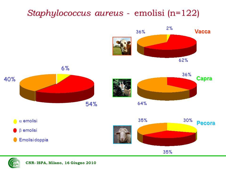 Staphylococcus aureus - emolisi (n=122) emolisi emolisi Emolisi doppia 6% 54% 40% 2%62% 36% 36% 64% 30% 35% 35% Vacca Capra Pecora