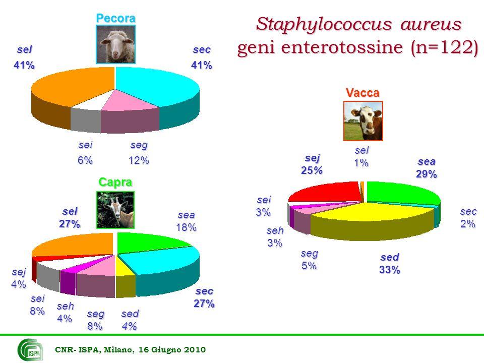CNR- ISPA, Milano, 16 Giugno 2010 sed 33% sea 29% sej 25% sei3% seg 5% sec2% seh 3% sel1%Vacca sec27% sel27% sea18% seg8% sed4% sej4% seh4% sei8%Capra