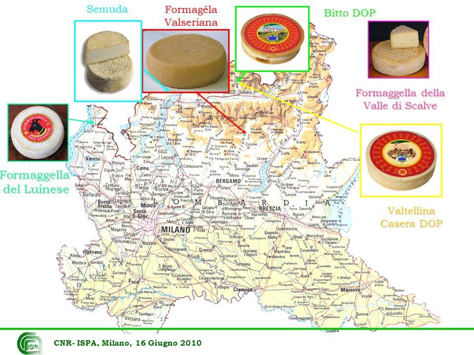 CNR- ISPA, Milano, 16 Giugno 2010 sed 33% sea 29% sej 25% sei3% seg 5% sec2% seh 3% sel1%Vacca sec27% sel27% sea18% seg8% sed4% sej4% seh4% sei8%Capra sec41%sel41% seg12%sei6%Pecora Staphylococcus aureus geni enterotossine (n=122)