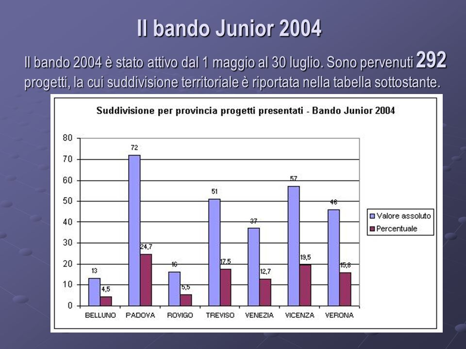 Il bando Junior 2004 Il bando 2004 è stato attivo dal 1 maggio al 30 luglio.