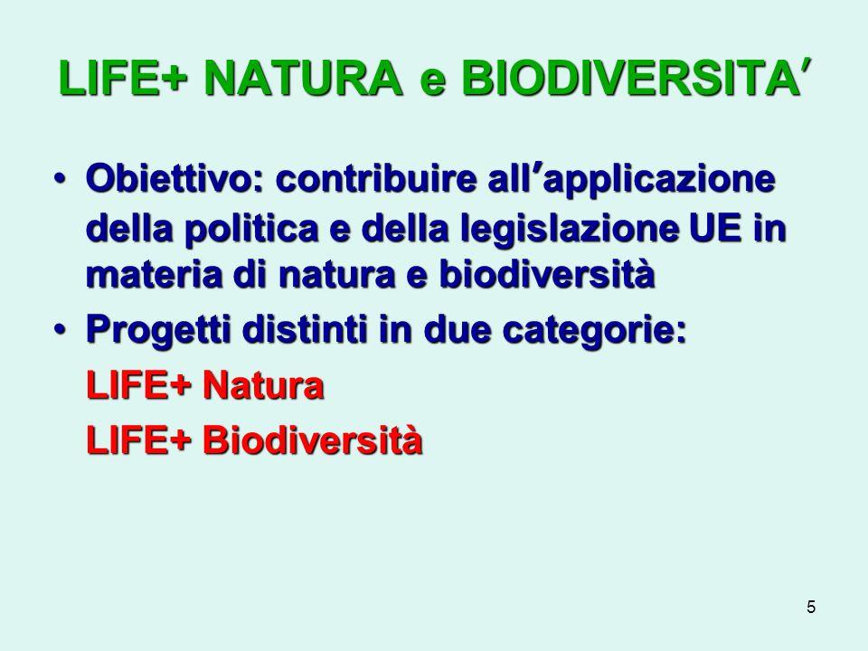 5 LIFE+ NATURA e BIODIVERSITA Obiettivo: contribuire allapplicazione della politica e della legislazione UE in materia di natura e biodiversitàObiettivo: contribuire allapplicazione della politica e della legislazione UE in materia di natura e biodiversità Progetti distinti in due categorie:Progetti distinti in due categorie: LIFE+ Natura LIFE+ Biodiversità